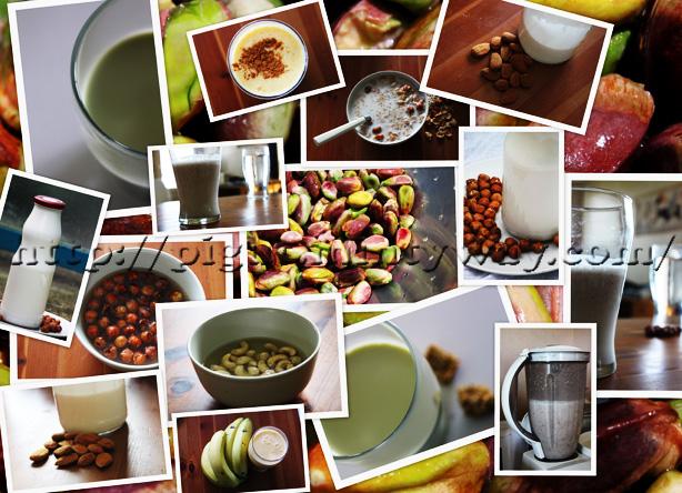Laits d'oléagineux crus, préparation et utilisations