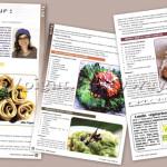 Autour de l'Association Végétarienne de France