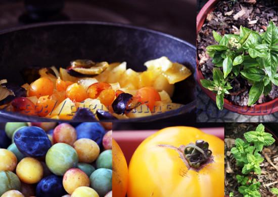 Préparation Confiture Tomate Jaune, Prune & Herbes Aromatiques