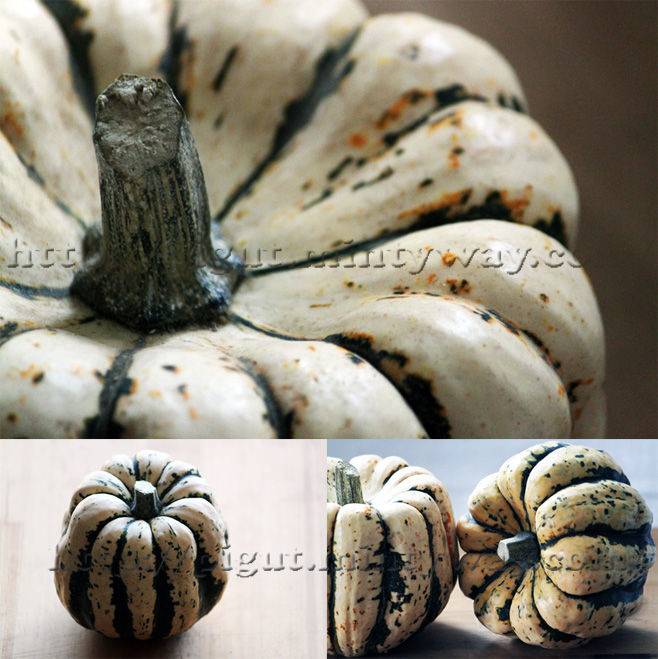 Courges Patidou