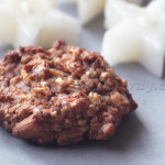 Biscuits Vegan aux Oléagineux Façon Mamapasta