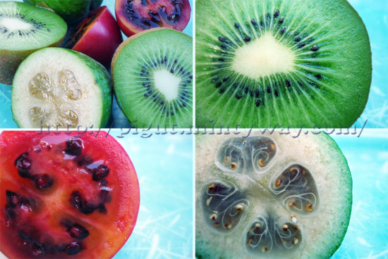 New Zealand Spoon fruits