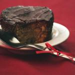 Succulent Cake Végétal Sans Gluten de Végébon