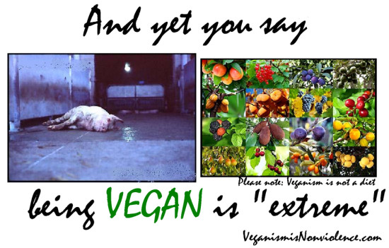"""And yet you say beeing vegan is """"extreme"""""""