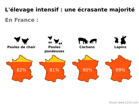 Pourcentage d'élevage intensif en France