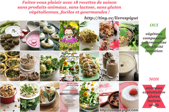 © PIGUT - 18 recettes bio végétale variées