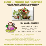 Cours de Cuisine Bio et Végétalienne en France, en Belgique et… ailleurs ?